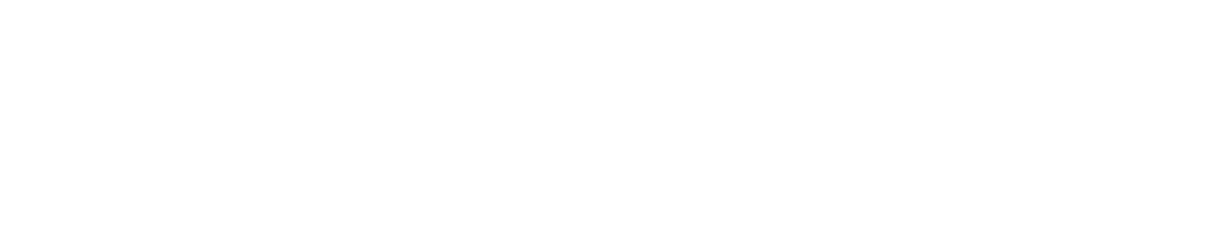 Basic Income Scotland - creating a fairer Scotland